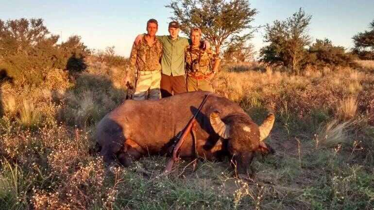 hunting Argentina