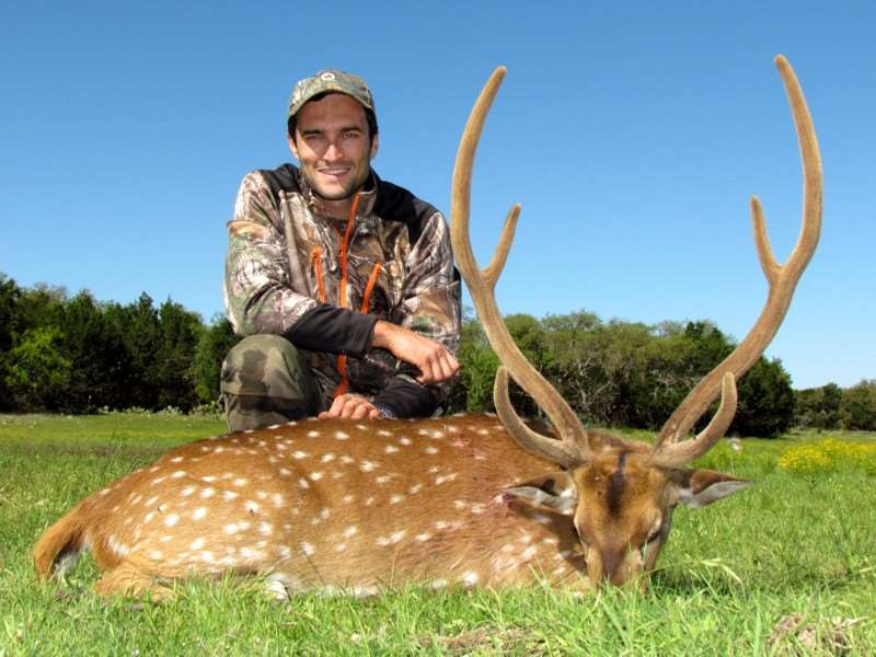an introduction to deer hunting in the united states In the united states, deer hunting is something of a religion for many  deer  hunting for beginners: an introduction to your quarry technically.
