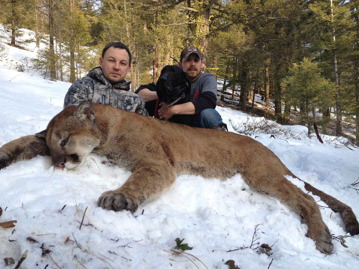 cougar hunter dating
