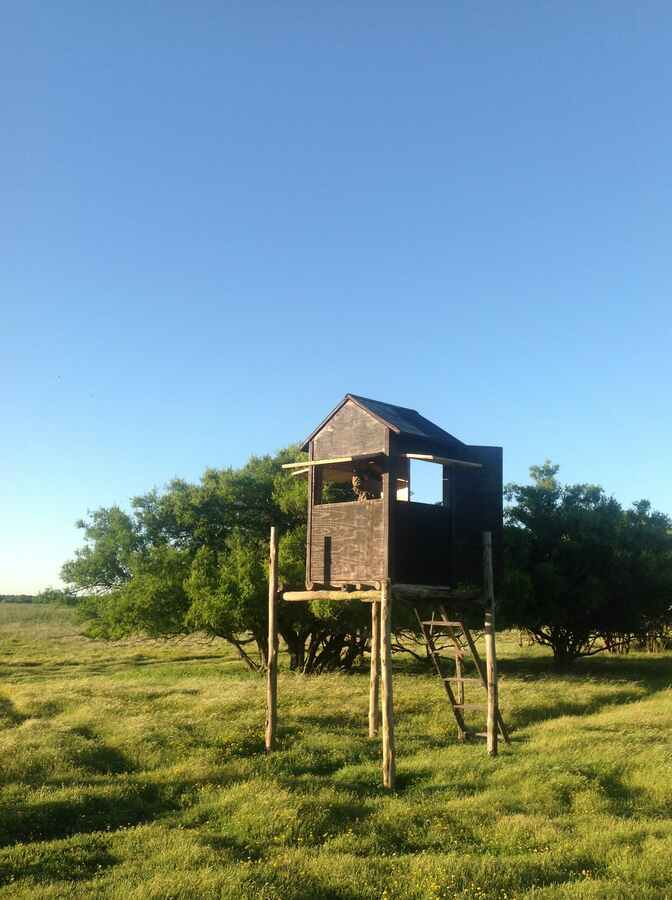 Hunting accommodation