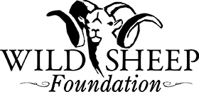 Wild Sheep Foundation, WSF