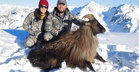 Stag, Tahr & Chamois Package '19