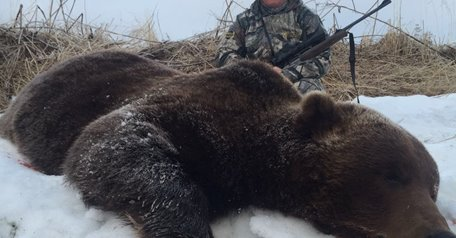 Kamchatka bear Spring hunt / Nemtik area
