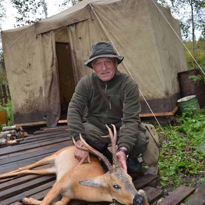 Siberian Roe deer hunt in the Rut
