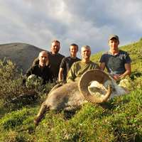 2021 Rocky Mountain Big Horn Sheep Hunt