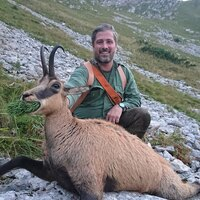 Chamois 1x1 in Austrian Alps