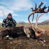 Barren Ground Caribou Hunt 2x1 '20