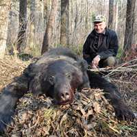 Amur bear Fall hunt
