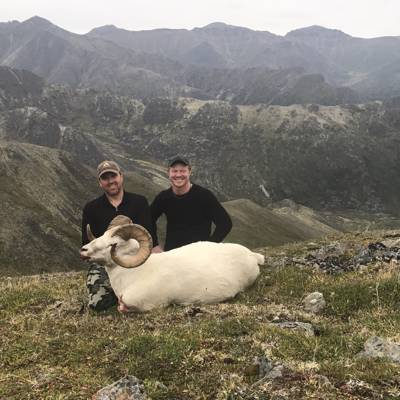 Dall Sheep Hunt 2021