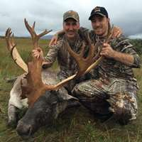 Archery Woodland Caribou Hunt 2x1