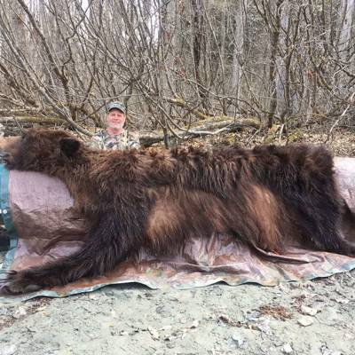 Spring Coastal Brown Bear Hunt 1x1