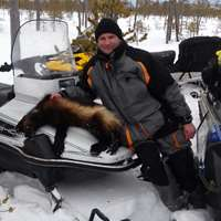 Winter Wolverine and Forest Bird Hunt