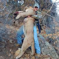 Spring Mountain Lion Hunt '20
