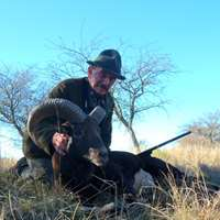 Mouflon Hunt in Argentina