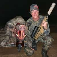 Night Vision 2 Hog Hunt 2020