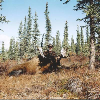 8 Day Moose Hunt