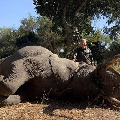10 Day Elephant Hunt Package