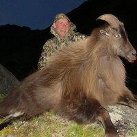 Bull Tahr Expedition Hunt 1x1