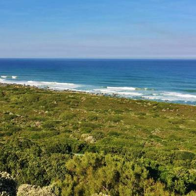 Eastern Cape Safari '19