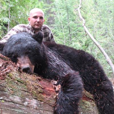 Spg Bear w/ Hounds & Spot/Stalk 2x1