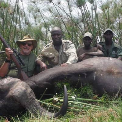 7 Day Buffalo Hunt 1x1
