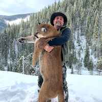 5-Day Mountain Lion Hunt '20