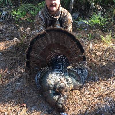 Osceola Turkey Hunting 20