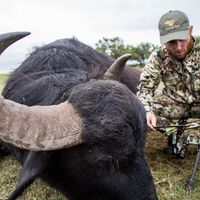 BOWHUNTING BUFFALO - BOW ONLY SECTIONS