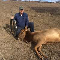 Cow Elk Meat Hunt at a Private Ranch