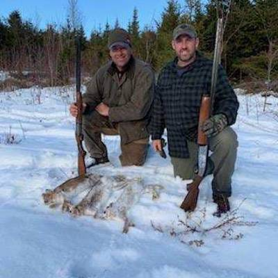Snowshoe Hare (Rabbit) Hunt