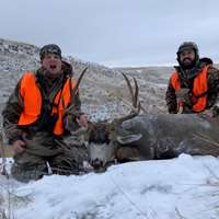 Rifle Deer Hunt 2019