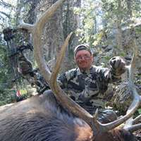 Wy. Cow Elk Bow or Rifle 4 day Guided