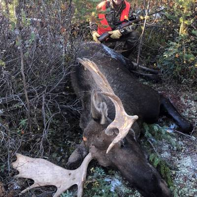 CANCELLATION Trophy Bull Moose Hunt 2х1
