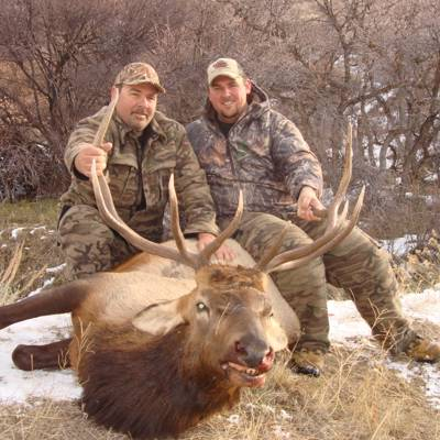 Combo Bull/Cow Elk Hunt Group Discount