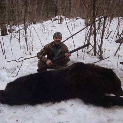 Amur bear den hunt