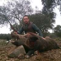 Wild Boar Hunt under the full Moon