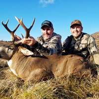 Sitka Blacktail Deer Hunt
