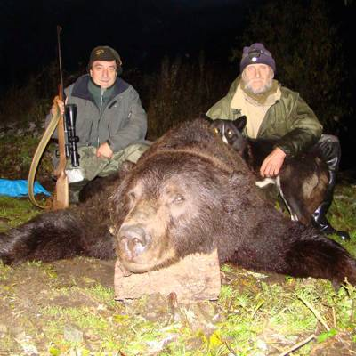 Kamchatka bear fall hunt