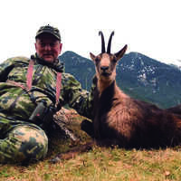 SPECIAL: Pyrenean & Cantabrian Chamois