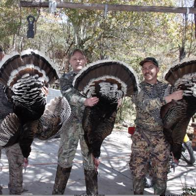 Gould's Turkey Hunt