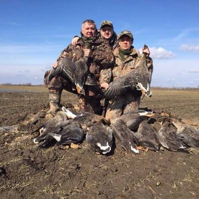 Goose and other game birds!