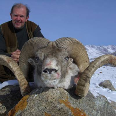 Marco Polo Sheep + Mid-Asian Ibex