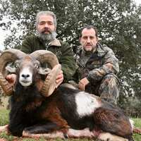 Iberian Red & Mouflon / Aug 31 - Sept 4