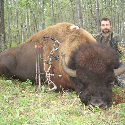 Trophy Bison Hunt