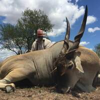 African Dream Hunt