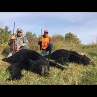 Fall Black Bear Hunt '19