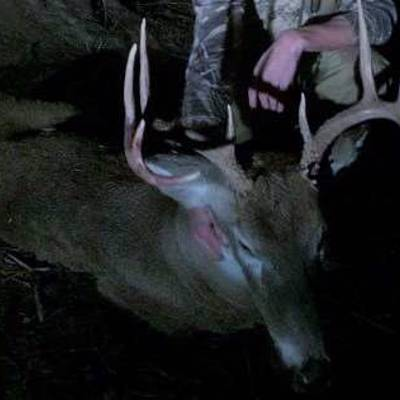 4 Day Getaway Deer or Elk Hunt 2x1 '20