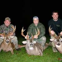 Late Season Whitetail Hunt Up To 135""