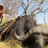 Last Hunt Available! Caprivi Buffalo