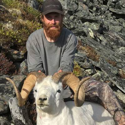 Dall Sheep Hunt 2020